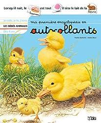 Ma premiere encyclopédie en autocollants : Dès 4 ans - Les bébés animaux