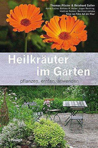 Heilkräuter im Garten: pflanzen, ernten, anwenden