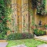 """Amagabeli Garden Trellis for Climbing Plants 60"""" x"""