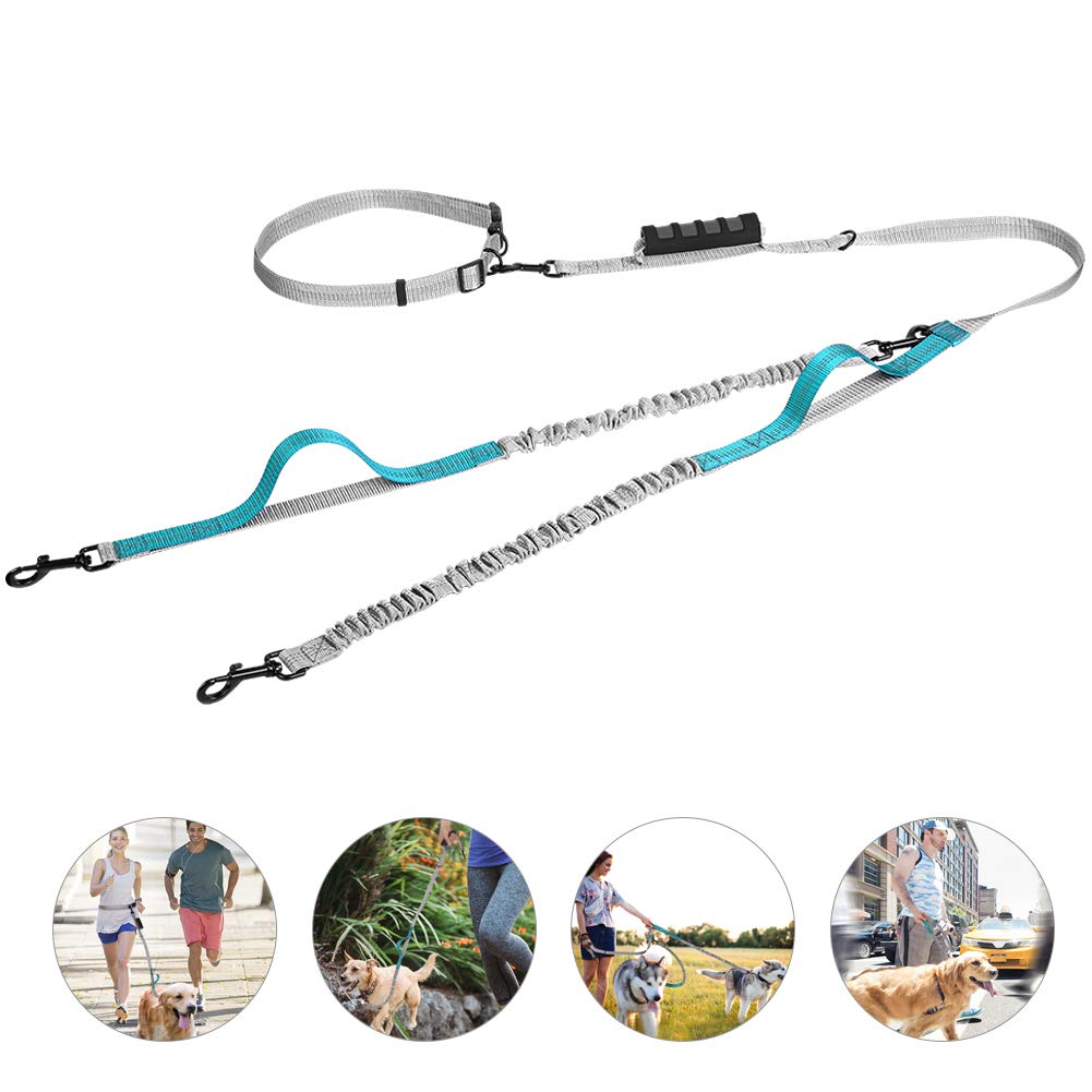 UgBaBa Hands Free Dog Leash for Walking Running Training Jogging,Heavy Duty Double Shock Absorbing Bungee Dog Leash Kit for 2 Dogs,Adjustable Waist Belt,Reflective, 3 Handles for Extra Control by UgBaBa