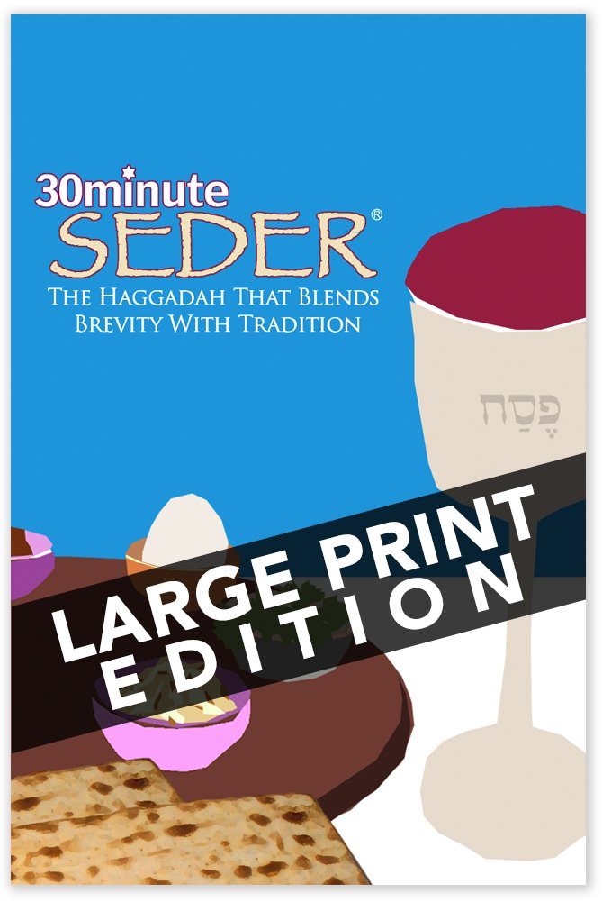 30 Minute Seder: The Haggadah That Blends Brevity With Tradition (Large Print)