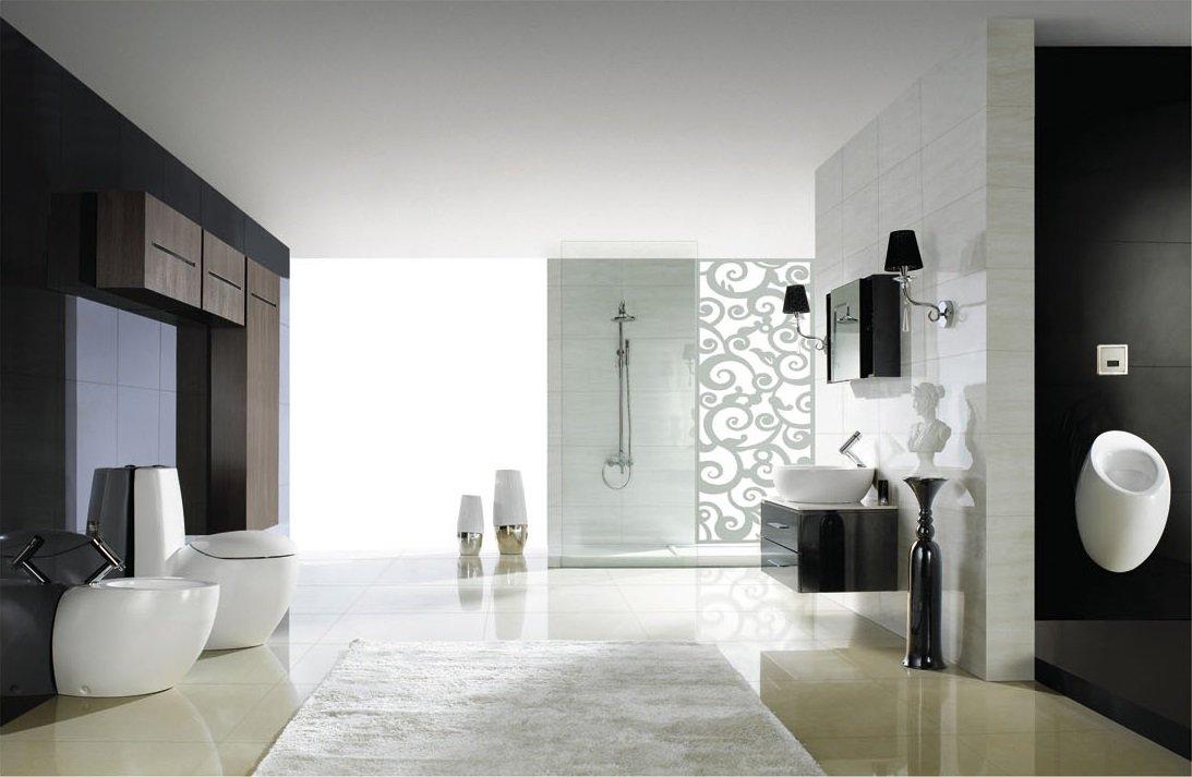 Modern Bathroom Toilet   One Piece Dual Flush   Cerchio   Toilet Bowls    Amazon.com