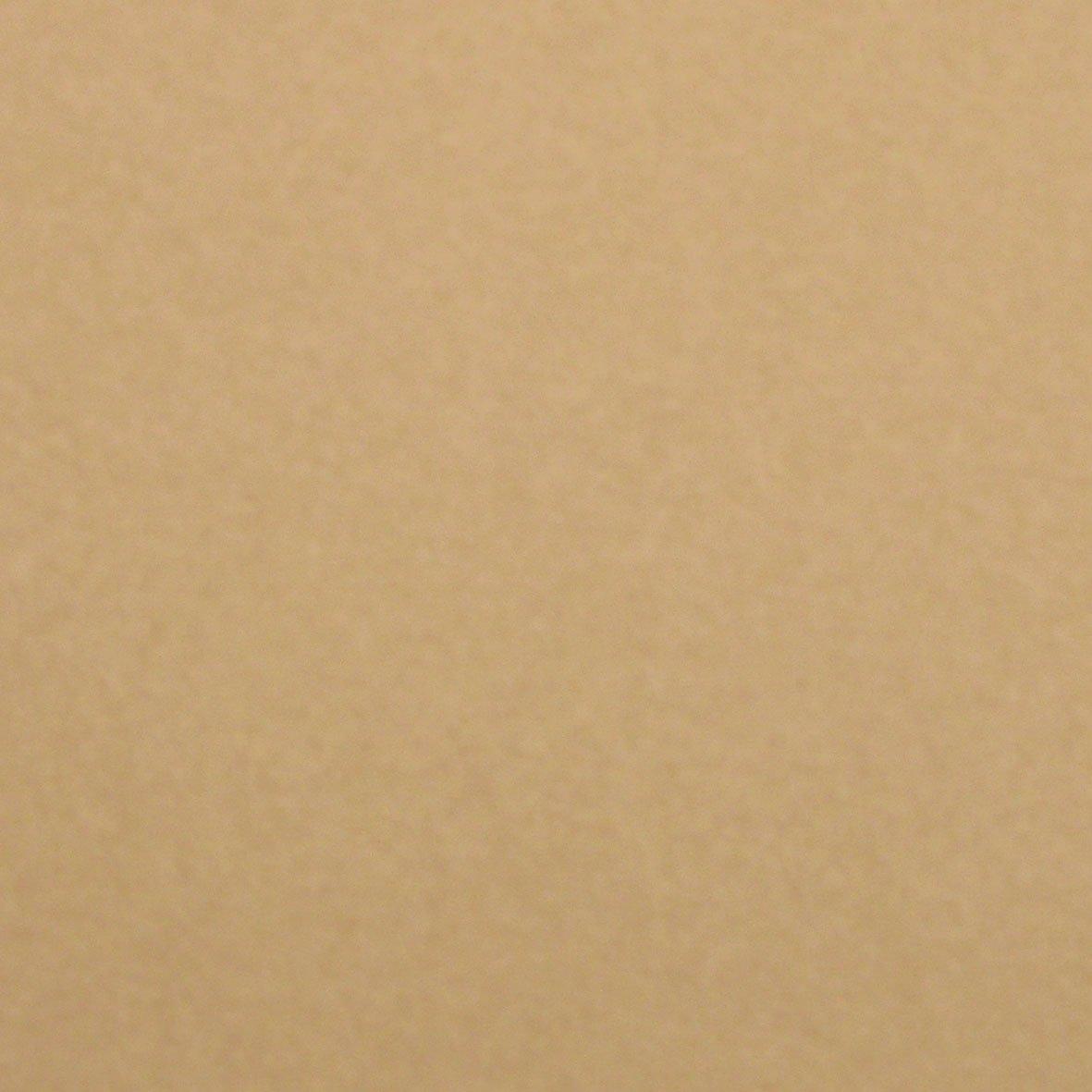 Hahnemuhle Velour Pastel Paper - Sandy Pack of 10 x 1/2 sheets 35x50cm Teaching Art