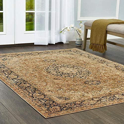 Home Dynamix Nicole Miller Belmont Angelo Area Rug 9 2 x12 5 , Traditional Medallion Beige Blue