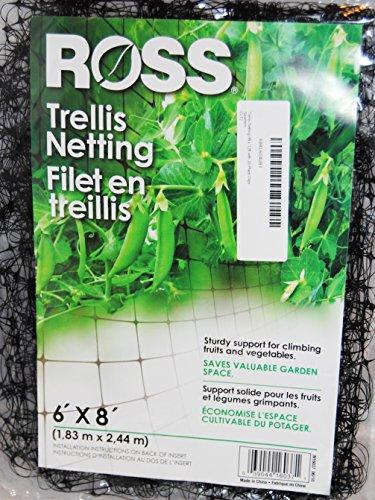 (Bert's Garden Trellis Netting 6ft x 8ft with 20 Plant Clips)