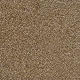 All American Carpet Tiles Wellington Residential
