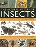 img - for The Natural History of Insects: A Guide to the World of Arthropods, Covering Many Insects Orders, Including Beetles, Flies, Stick Insects, Dragonflies, Ants and Wasps, as Well as Microscopic Creatures by Martin Walters (30-Jun-2013) Paperback book / textbook / text book