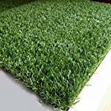 Synturfmats 16inx32in Artificial Grass Carpert Rug - Premium Indoor / Outdoor 4-Tone Synthetic Turf, 1 Inch Blades Height