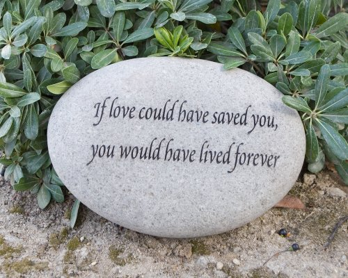 If Love Could Saved You would have lived forever Engraved Natural River Stones For Sale