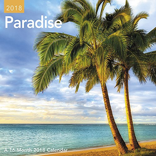 2018 Paradise Mini Calendar (Day Dream) cover