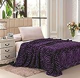 Jungla Animal Print Ultra Soft Purple Zebra Queen Size Microplush Blanket