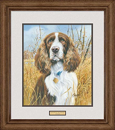 That's My Dog - Springer Spaniel Framed Print by Jim Killen