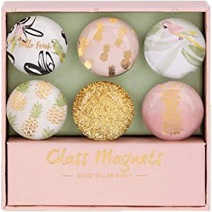 """Pink Pineapple Fridge Magnets Round Glass Magnets for Decorative Refrigerator, Dry Erase Board, Whiteboard Calendar Maps, 30mm(1.18"""") 6pcs/pack (Pink Pineapple Theme)"""