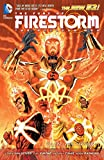 img - for The Fury of Firestorm: The Nuclear Men Vol. 1: God Particle (The New 52) (The Fury of Firestorm: The Nuclear Man) book / textbook / text book