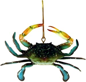 Charlotte International Dimensional Coastal Maryland Blue Crab Christmas Ornament 4 Inches