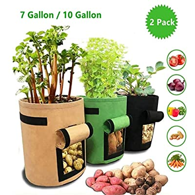 DUTISON 2 Pack Potato Grow Bag Thickened Breathable Nonwoven Plant Receptacle Fabric Pots with Handles for Potatoes Tomatoes Carrot (10 Gallon, Green) : Garden & Outdoor
