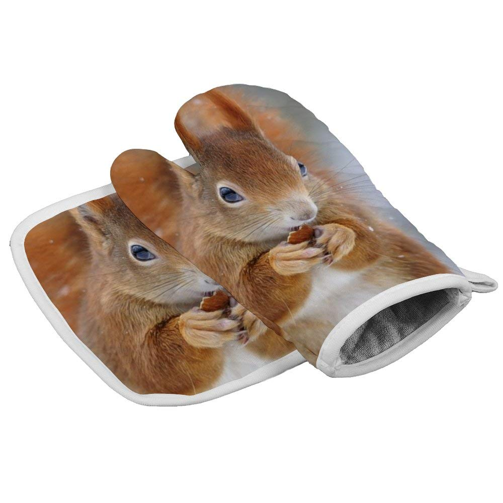 July-Seven Cute Squirrel (2) Oven Mitts,Professional Heat Resistant Microwave BBQ Oven Insulation Thickening Cotton Gloves Baking Pot Mitts with Soft Inner Lining