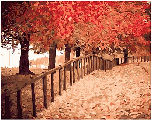 Diy oil painting, paint by number kit- The maple leaves to meet autumn 1620 inch. by Colour Talk