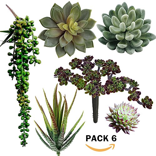 Supla Pack of 6 Assorted Artificial Succulents Plant Picks Textured Faux Succulent Pick Succulent Stems Fake succulent bouquet String of Pearls Succulent Faux Succulent Floral Arrangement Accent by Supla