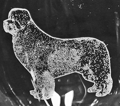 (Muddy Creek Reflection Newfoundland Dog Laser Etched Double Old Fashioned Whiskey Glass Set (2, DOF))