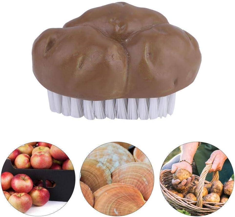 Brosse /à Pomme de Terre Brosse /á L/égumes Multi-fonctionnelle Fruits L/égumes Outils Brosse de Nettoyage Facile pour Cuisine Maison