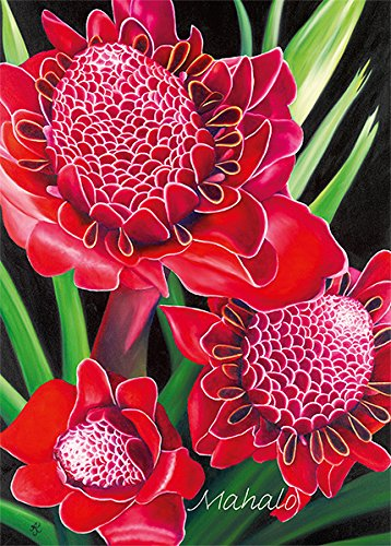 Set of 12 Hawaiian Greeting Cards - Torch Ginger by Anna Keay - Thank You - Glitter Card (Torch Polynesian)