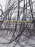 Antony Gormley, Antonio Damasio, Markus Steinweg, 3865606164
