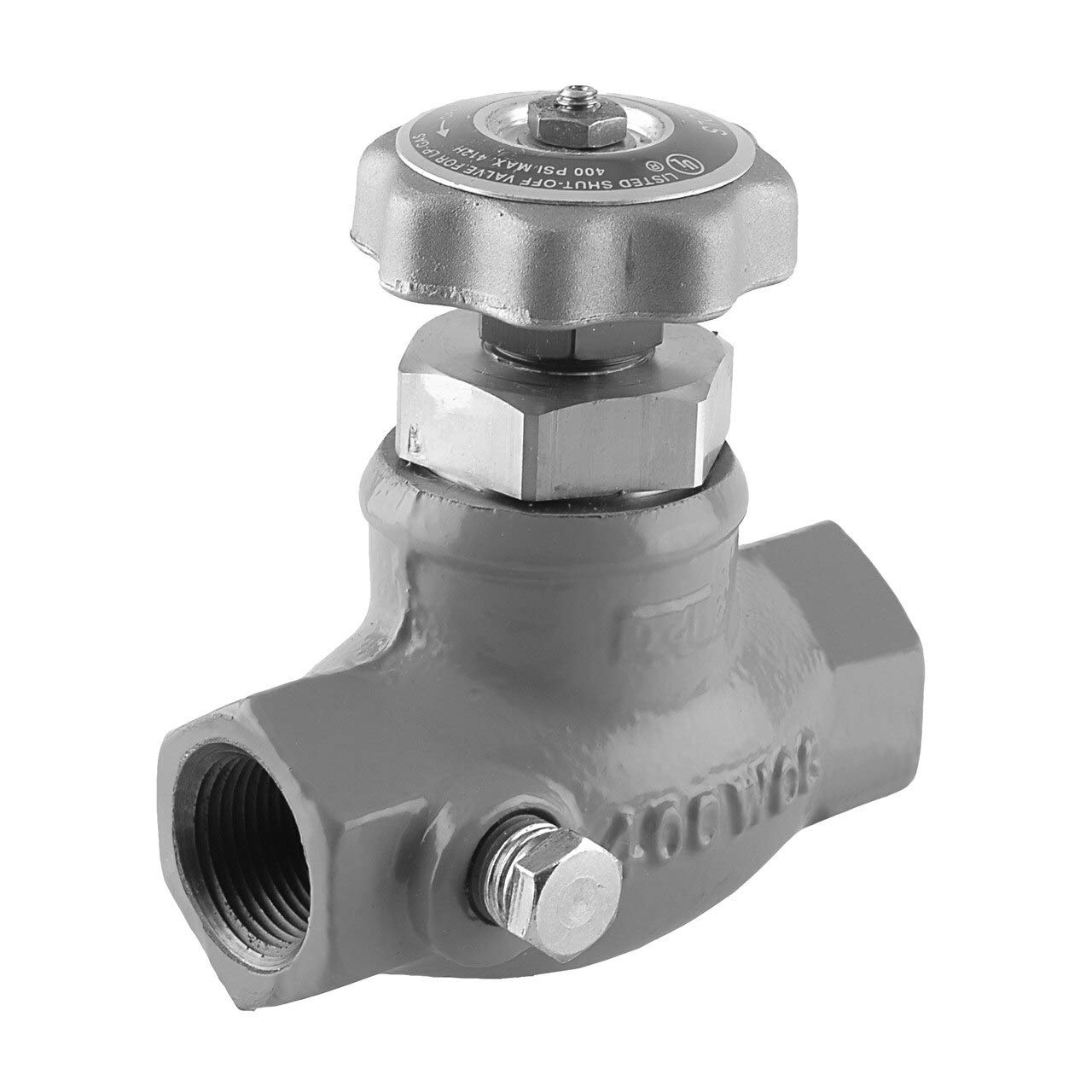 Emerson Fisher N310 Series Globe Valve-3//4 in.