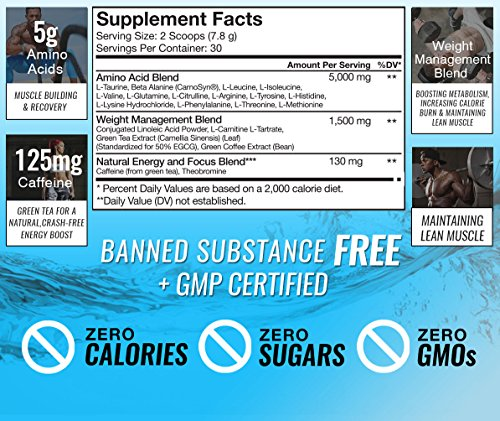 RSP AminoLean Energy & Weight Loss Formula, BCAA Powder with CLA, Green Tea Extract and Caffeine for Building Lean Muscle and Burning Fat, Blackberry Pomegranate, 70 Servings