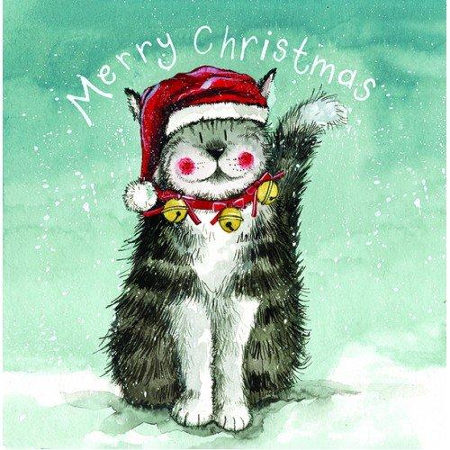 Alex Clark Charity Christmas Cards –  Christmas Hat Cat Christmas Cards, confezione da 5