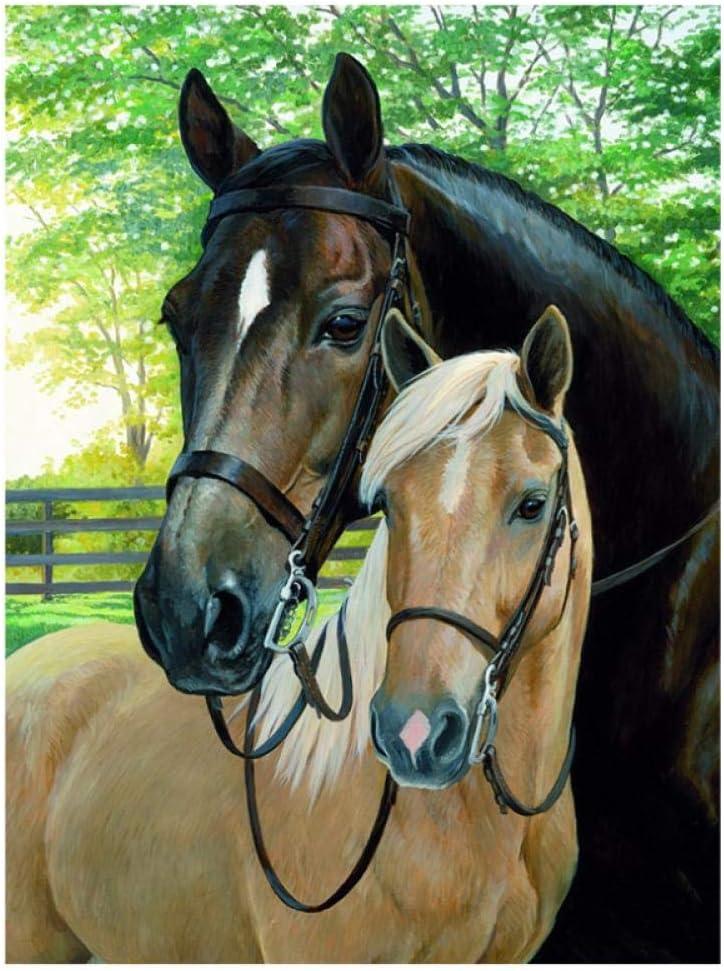 Artaslf Taladro cuadrado completo 5D DIY pintura de diamante dos caballo amor Rhinestone bordado punto de cruz 5D decoración del hogar regalo - 30 x 45 cm sin marco