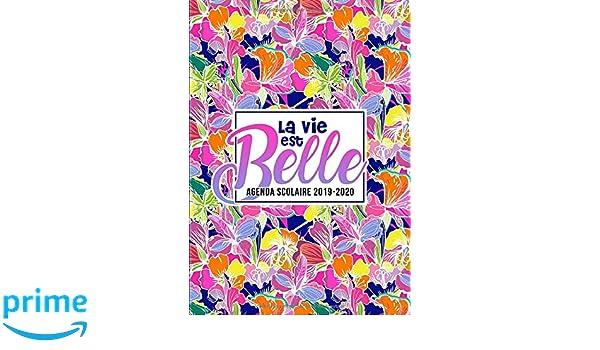 Amazon.com: La vie est belle : agenda scolaire 2019-2020: Du ...