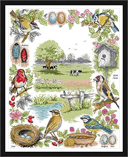 Joy Sunday Cross Stitch Kits 14CT Counted Bird's Home 18.9