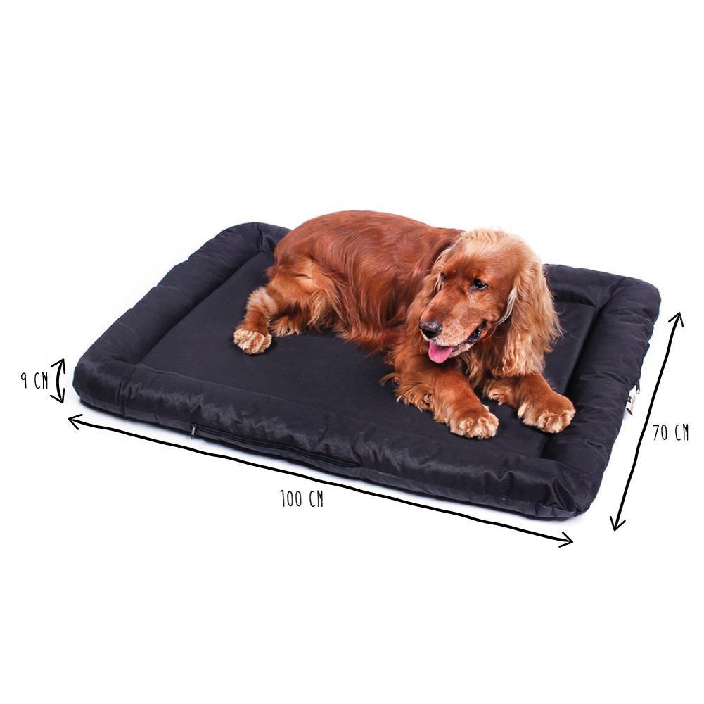 ANIMALY Cama para Perros Impermeable y antiarañazos, cojín para Perros Adecuado para Uso en Exterior, Cubierta Lavable, Antideslizante, también Apta por ...