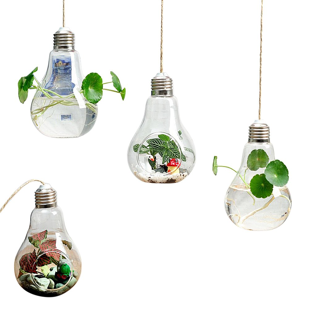 SANSHI 4 Pack Assorted Lamp Bulb Wall Hanging Plant Terrarium Glass Planter