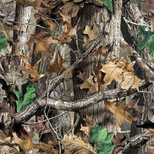 Whimsical Practicality Mossy Oak Woodland Camo Printed Area Measure(1/4 Sheet), 9