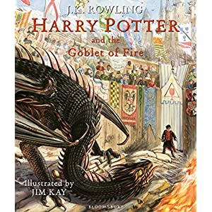 Harry Potter and the Goblet of Fire: Illustrated Edition (Harry Potter Illustrated Edtn)Hardcover – 8 Oct. 2019