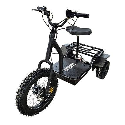 Amazon com : TOXOZERS Electric Trike 48v 1200w Adult