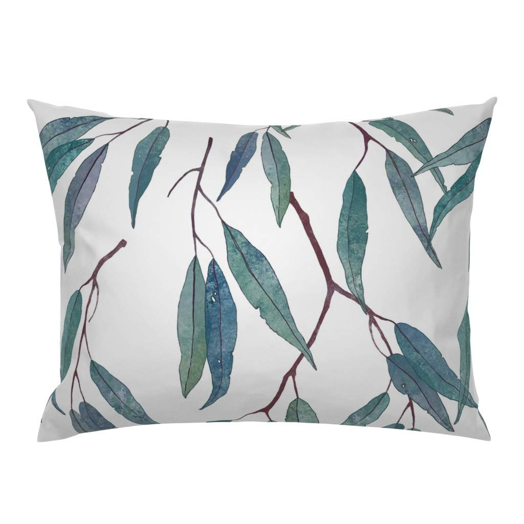 Amazon.com: roostery eucalipto hojas de eucalipto, Botánico ...