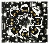 Jaga Jazzist: Starfire (digipack) [CD]