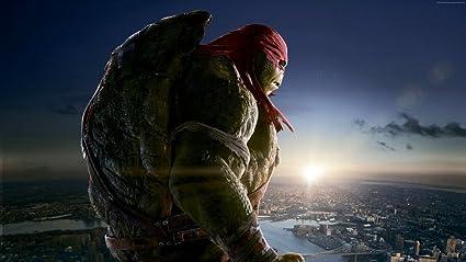 Amazon.com: Innerwallz Teenage Mutant Ninja Turtles 2014 ...