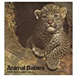 img - for Animal babies (A Terra magica children's book) book / textbook / text book