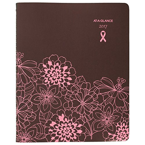 "AT-A-GLANCE Weekly / Monthly Appointment Book / Planner 2017, Sorbet, 8-1/4 x 10-7/8"" (794-905)"