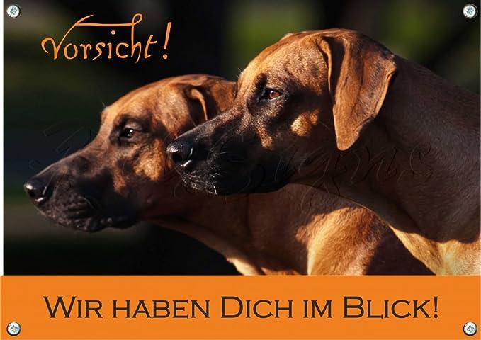 Rhodesian Ridgeback Petsigns Hundeschild uv-best/ändiges Metall Warnschild