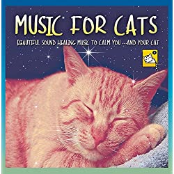 Music for Cats - Beautiful Sound Healing Music to Calm You ...And Your Cat