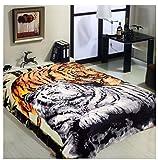 Wild Animal Brown Tiger Print Blanket , TV, Cabin, Couch,Plush,Warm, Bedcover Throw , Full Queen, 75''Wx90''H , Silky Mink Cozy, For Girls,Boys, Kids,Men,Women