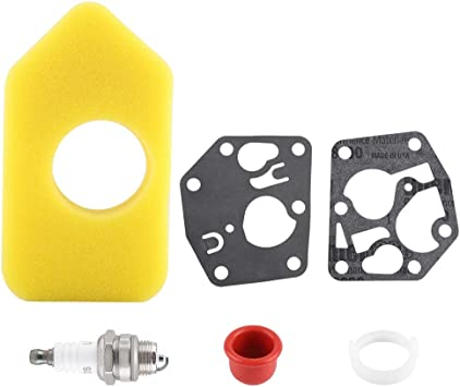 281028 Membrane 495770 Membransatz passend für Briggs/&Stratton  795083 272372