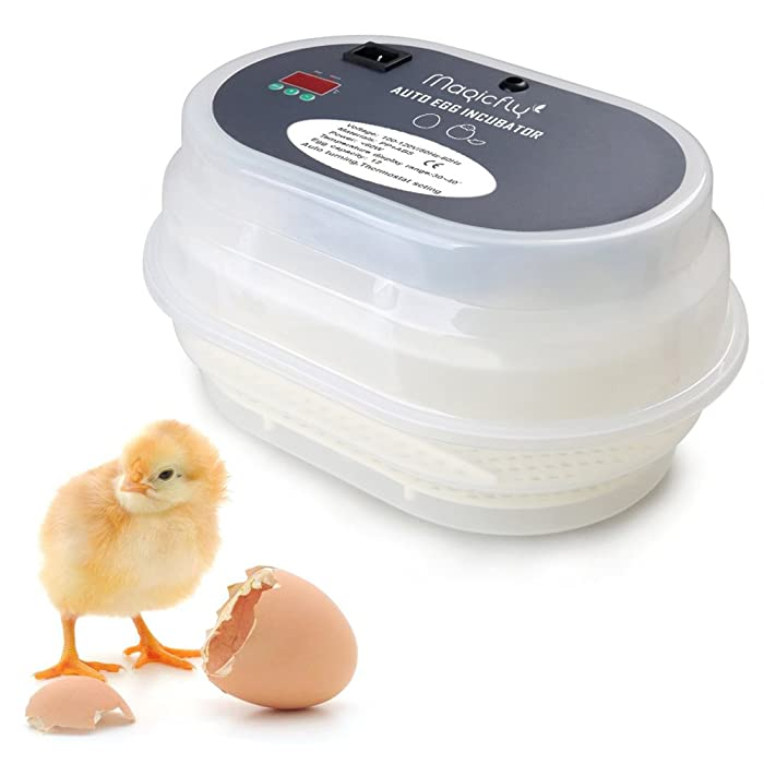 Magicfly Digital Mini Fully Automatic Egg Incubator