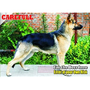 Attention - Beware / Fun Sign Dog East-European Shepherd Dog for your home or house SF1364 16