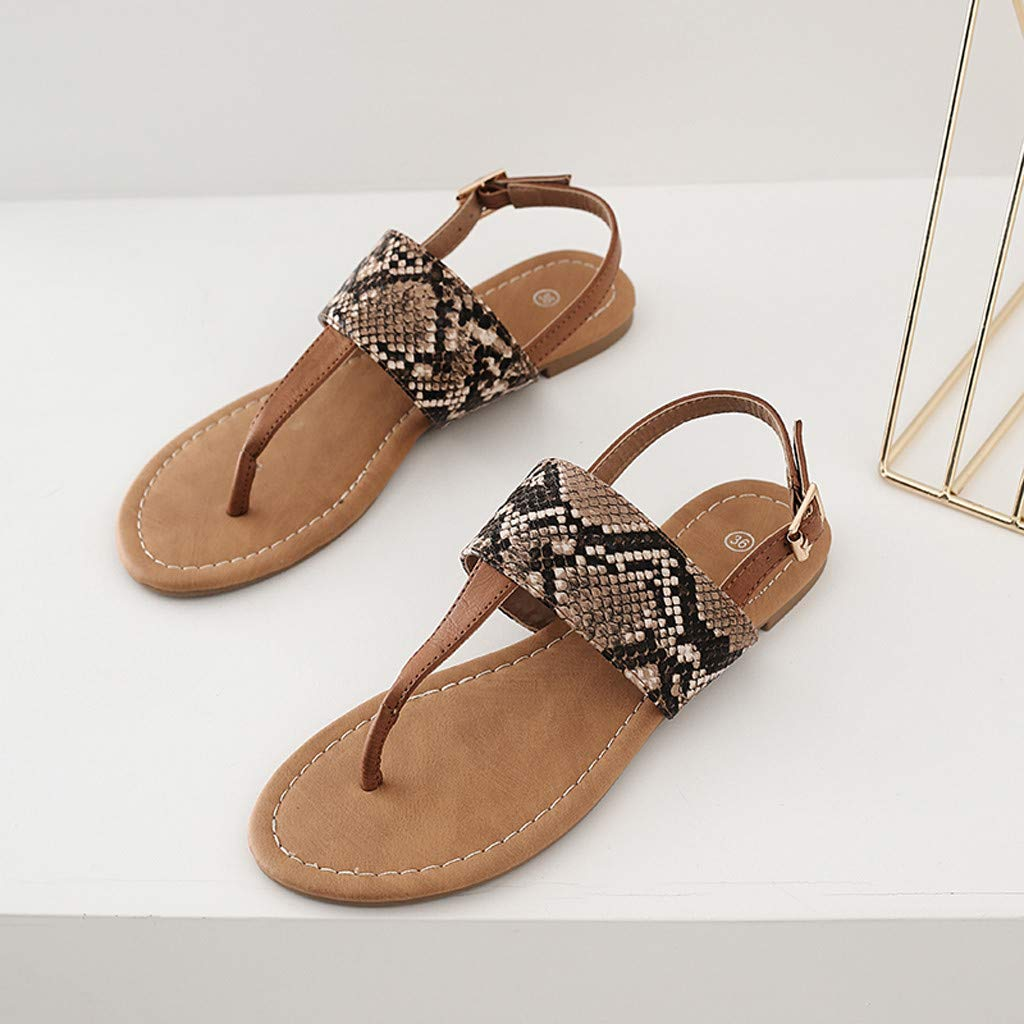 0bc167b862a Womens T-Strap Flip Flop - Ladies Flats Snakeskin Open Toe Buckle ...